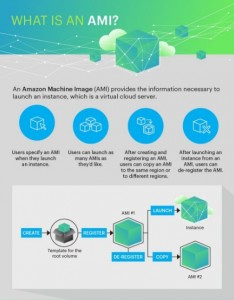 AppDynamics What is and AMI